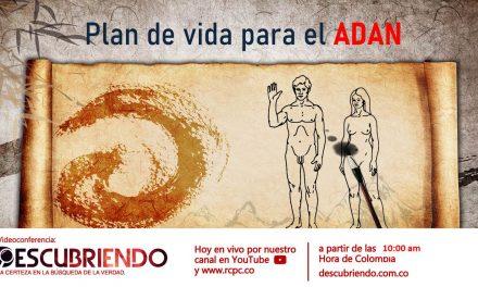 Video conferencia – Plan de vida para el ADAN